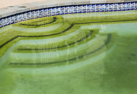 Phosphates & Nitrates in Swimming Pools